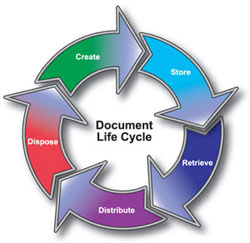 document cycle
